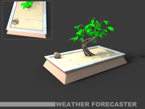Bonsai weather forecaster